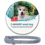 Miglior collare antipulci e zecche per cani