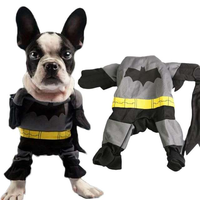 Costume Carnevale per Cani