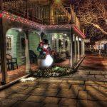 Decorazioni di Natale da Giardino