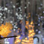 Luci di Natale alimentate a Batteria