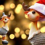 Renne di Natale