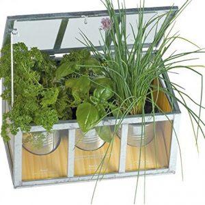 mini serre in vetro per il giardino e il balcone